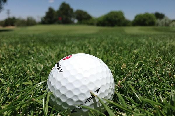 Golf ball in grass - Sports-Nets Ltd
