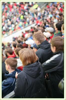 Stadium Netting - Sports-Nets Ltd